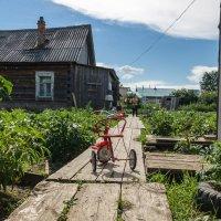 Жизнь на селе :: Сергей Шичанин