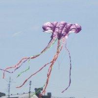 Воздушный змей, его полёт высок... :: Дмитрий Никитин