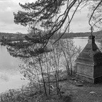 На берегу реки :: Светлана