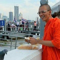 Монах кормит голубей :: Олег Гаврилов