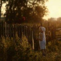 Вечер в деревне :: Александра