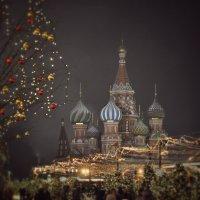 Отшумели праздники зимы... :: Василий Андерс