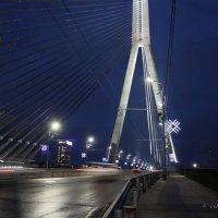 Рига, Вантовый мост. :: Liudmila LLF