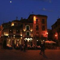 Лунная ночь! :: Mila .