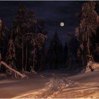 Ночь на горнолыжной трассе :: Владимир Чикота