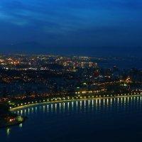 Ночь на побережьи Бразилии :: sm-lydmila Смородинская
