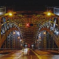 Мост Петра Великого. :: Андрей Мясоедов