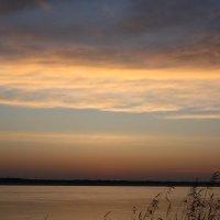 Берег реки :: Dmitriy Popov