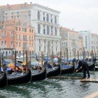 Утро в Венеции :: Олег Гаврилов