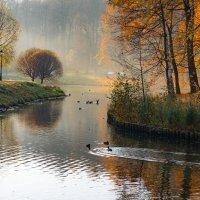 Осень в Царицыно :: Владимир Брагилевский