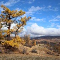 Осень...в горах :: владимир