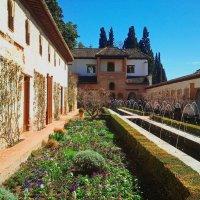 Весь мир на мобильный. Alhambra. Дворик Оросительного канала.удалитьре :: Владимир Филимонов