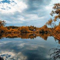 Лагерный пруд :: Анастасия Верушкина