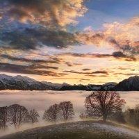закат над туманом :: Elena Wymann