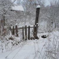 Зима... :: BoxerMak Mak