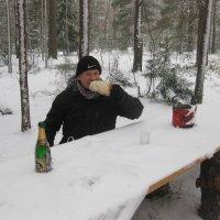 Завтрак в зимнем лесу... :: Просто witamin