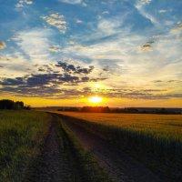 закат в поле :: Анастасия Верушкина