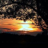 Закат в любимом парке :: Yulia Chizhikova