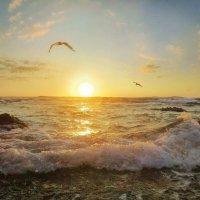 Солнечная волна :: Эля Юрасова