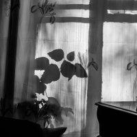 ... :: Анна Углова (Рыбакова)