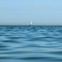 Одинокий рыбак :: Виктор