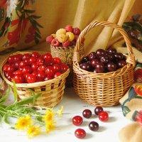 Моё ягодное лето :: Наталья Ильичёва