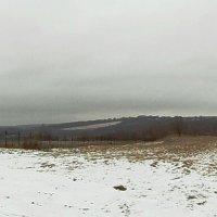 Зимы ждала, ждала природа. Снег выпал только в январе. :: Галина