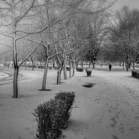 Одиночество... :: Андрей