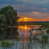 Закат на монастырском пруду. :: Igor Yakovlev