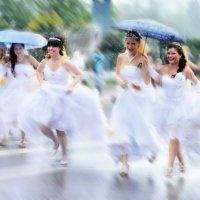 Дождь для невест :: Natalya Knizhnikova