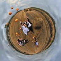 мандариновая свадьба :: Антон Летов