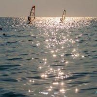 Летнее звездное...  море... :: Елена Васильева