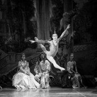 Танец в воздухе :: Vitaliy Turbinin