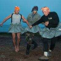 Танец маленьких лебедей. :: Александр Степаненко