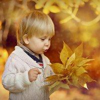 """Осень,осень!Ну давай у листьев спросим..."" :: LyudMilla Zharkova"