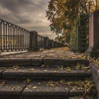 Желтые листья в Летнем саду :: Valeriy Piterskiy