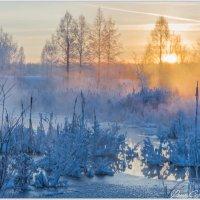 Зимняя сказка :: Сергей Винтовкин