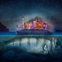 Fish Island :: YantsY