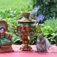 Чаепитие в саду :: Lyudmila Gruzdeva