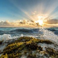 Ах, это карибское море! :: Александр Кошалко