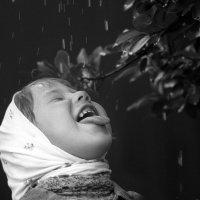 Летний дождик :: Вера Шамраева