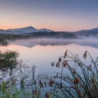 Осенний туман над водой... :: Тамара Морозова