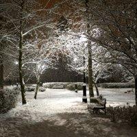 Зимняя сказка приходит в парки :: Екатерина Пинашина