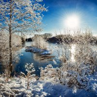 По первому снегу. :: Анатолий