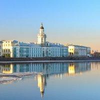 Город над вольной Невой :: Андрей Вестмит