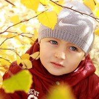 задумчивая осень :: Светлана Попова