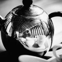 Фотография для чайников :: Евгения Черепанова