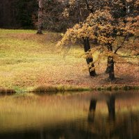 Магия коротких октябрьских дней... :: Ирина Румянцева