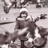 "Все ""не любят"" голубей :-) :: Loed Art"