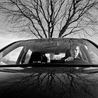 В пути... :: Анастасия Коркина